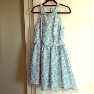Lauren Conrad, Disney Cinderella Dress